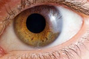 eyeball 36427111_s